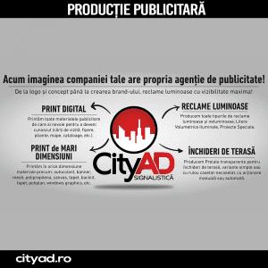 CityAD Signalistica
